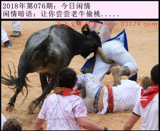 076期今日闲情:让你尝尝老牛偷桃.....