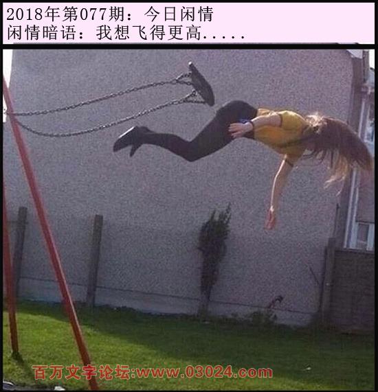 077期今日闲情:我想飞得更高.....